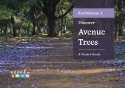 Discover Avenue Trees
