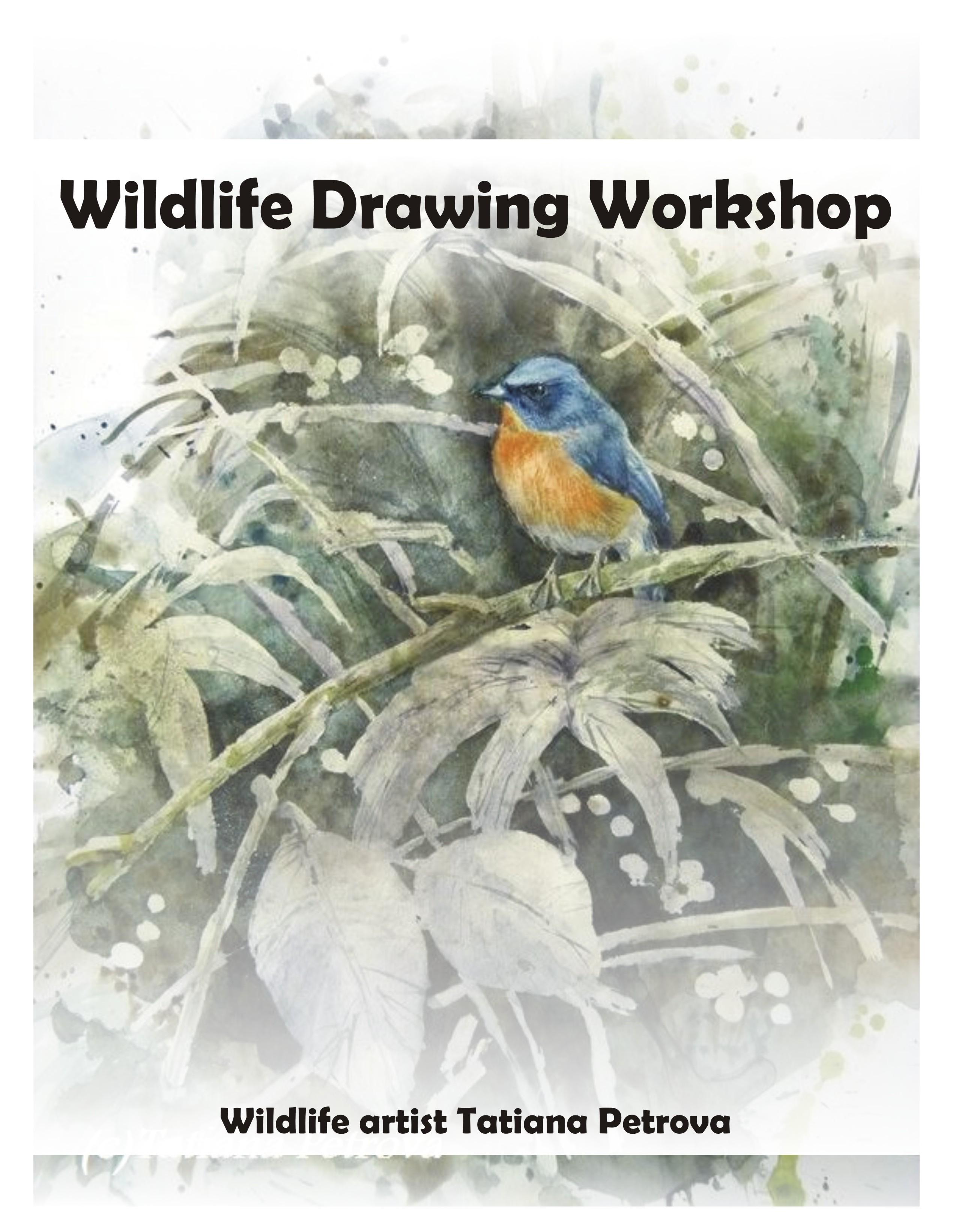 Wildlife Art Workshop by Tatiana Petrova